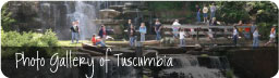 Photo Gallery of Tuscumbia